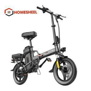 1 avata homesheel t5s 300x300 - Xe điện gấp gọn Homesheel FTN T5S- 8AH
