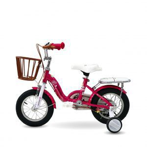xe dap tre em phoenix 01 300x300 - Xe đạp trẻ em Phoenix