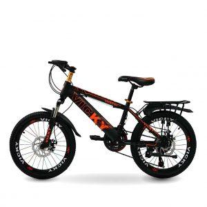 xe dap tre em vicky 20 inch ct 01 300x300 - Xe đạp trẻ em Vicky 18 inch