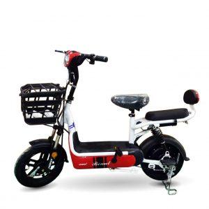 xe dap dien Mini Beaut ct 01 300x300 - Xe đạp điện Mini Beaut