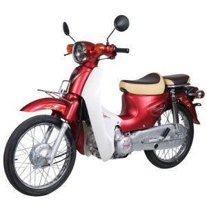 xe cup 50cc halim mau moi 2021 1 300x300 - Trang Chủ